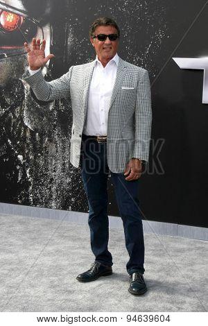 LOS ANGELES - JUN 28:  Sylvester Stallone at the