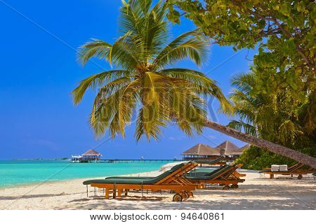 Maldives beach - nature vacation background