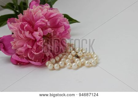Peony and perls