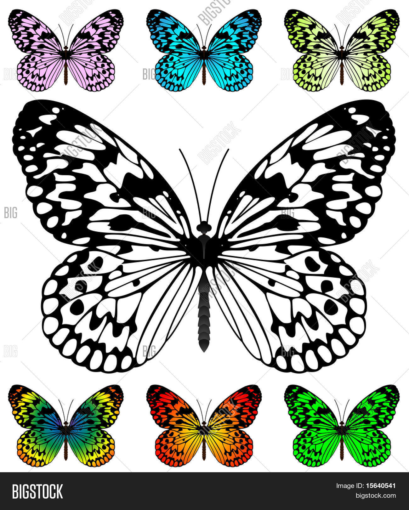 20 Lovely butterfly Template | Best Template