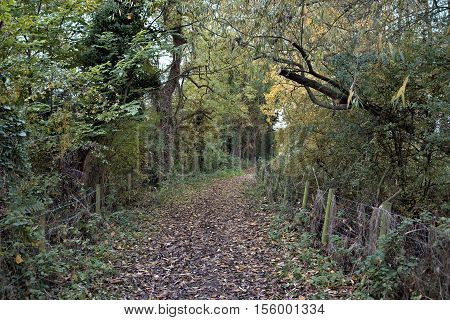 Empty countryside walking track. Baker Path Tarvin Cheshire England