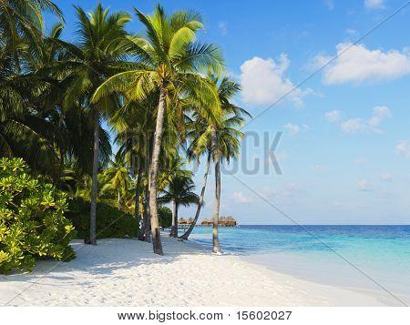 Tropical beach at hotel resort