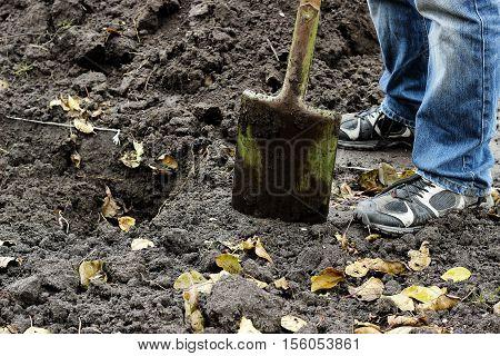 Male working leg digging soil with garden shovel