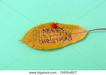 picture of a autumn walnut leaves with handwritten text merry xmas
