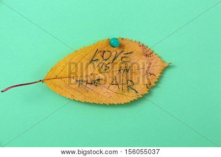 picture of a autumn walnut leaves with handwritten text love is in the air