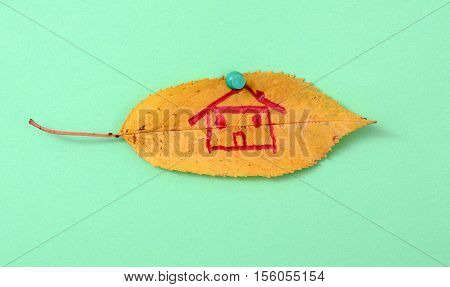 picture of a autumn walnut leaves with hand draw house