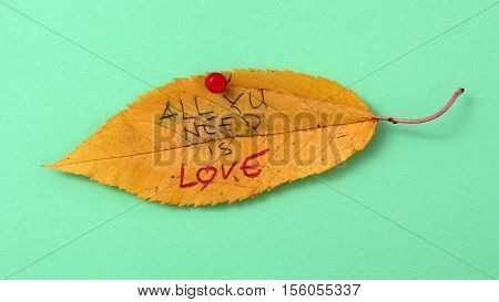 picture of a autumn walnut leaves with handwritten text