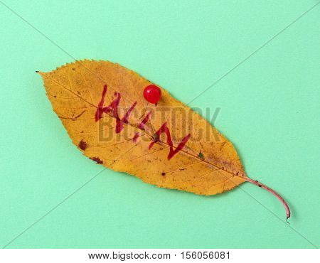 picture of a autumn walnut leaves with handwritten text win