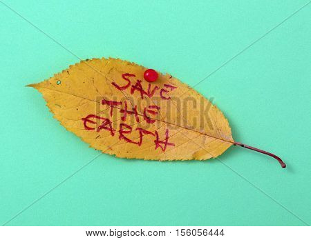 picture of a autumn walnut leaves with handwritten text save the earth