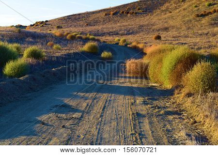 Dirt road taken at a rural field with sage plants and tumble weeds taken in the California Countryside