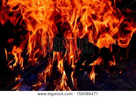 closeup of the fire flames of a bonfire or a fireplace