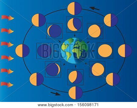 illustration of phases of the moon for children