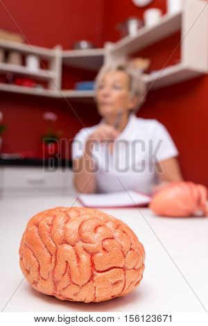 Aged Female Doctor, In Front A Plastic Brain