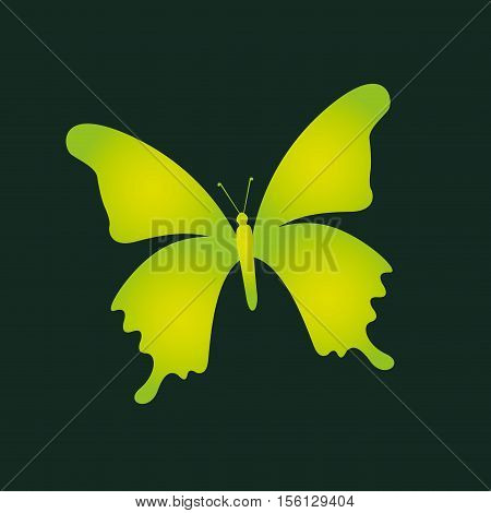 eco book environment butterfly graphic vector illustration eps 10