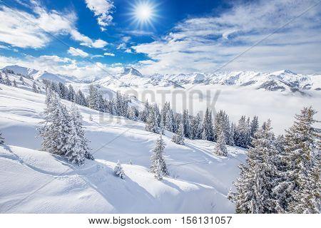 Trees covered by fresh snow in Kitzbuhel ski resort, Tyrolian Alps, Austria