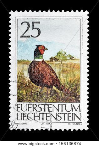 Save Download Preview LIECHTENSTEIN - CIRCA 1990 : Cancelled postage stamp printed by Liechtenstein, that shows Common pheasant.