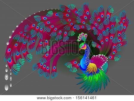 Illustration of magic peacock, vector cartoon image.