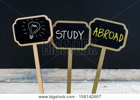 Concept Message Study Abroad And Light Bulb As Symbol For Idea