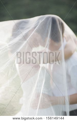 Wedding couple under veil hugging and kissing on field.