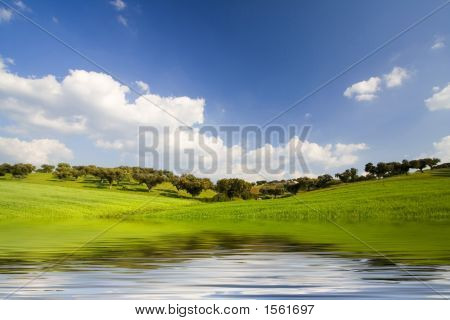 Landscape With Water Reflexion