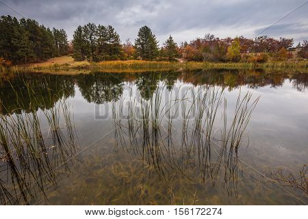 Autumn colours with trees, forest and lake