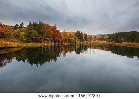 Autumn Forest And Nature Colours