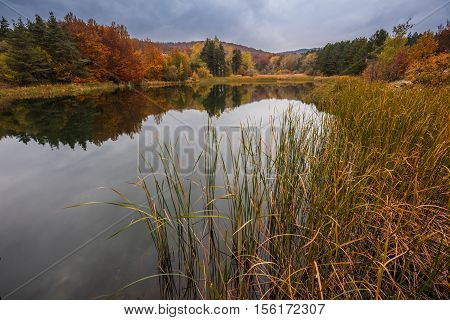 Autumn colors with trees, forest and lake