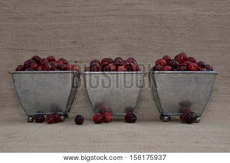 Close up of a fresh red and maroon cranberries heaped in three footed tin containers with several berries outside of dishes and photographed against an ecru woven cloth background with shallow depth of field and fill flash.