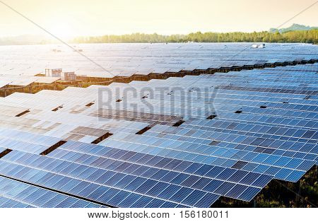 Sunset rays over a photovoltaic power plant