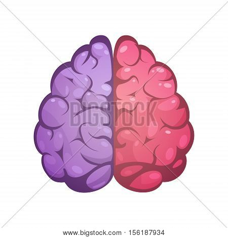 Human brain two different colored symbolic left and right cerebral hemispheres model image icon abstract vector illustration