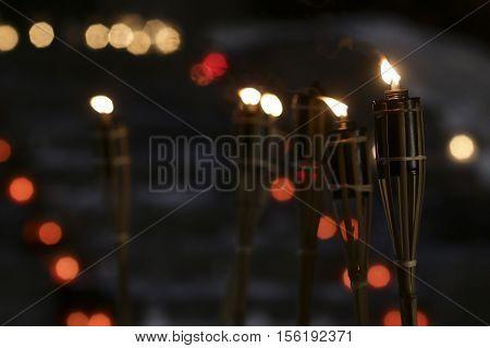 Nice Burning Torch in the Dark Night