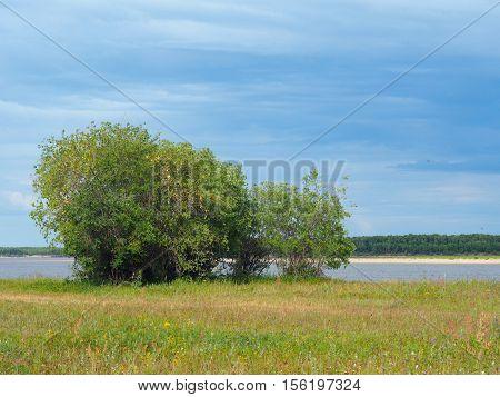 The floodplain of the river Lena (Yakutia)