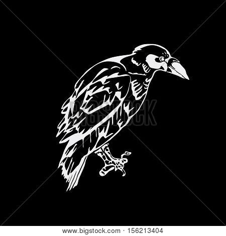 Hand-drawn pencil graphics, bird, raven, crow, rook. Engraving, stencil style. Black and white logo, sign, emblem symbol Stamp seal Simple illustration Sketch