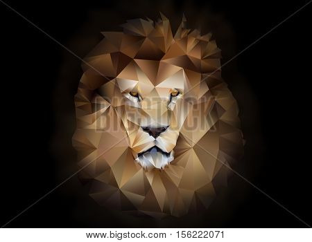 Lion polygon geometric illustration on black background