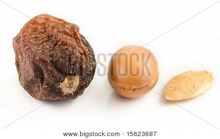 Argan fruits with nut with shell and almond of argan. Isolated on white poster