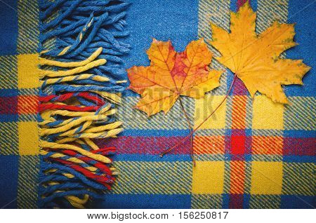 Blue vintage blanket tartan plaid wth with two maple leaves, copy space, texture background