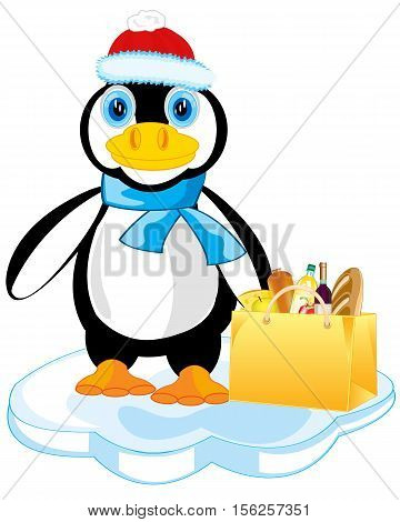 Cartoon of the penguin with product and in hat on block of ice