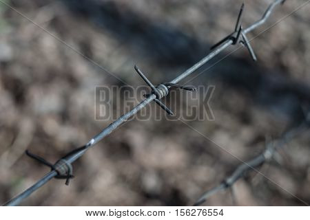 Piece of a barbed wire - small depth of sharpness