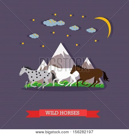 Three multi-colored wild horses, white, grey and brown running through the mountains in the twilight under the moonlight. Vector illustration in flat design. Side view.