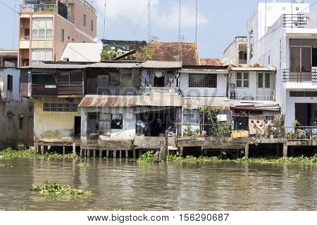 Poor Residential Houses Among Mangrove Forest