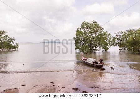 Solitude twilight beach in the evening with mangrove tree and local boat Thailand