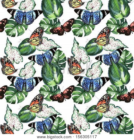 Tropical Hawaii leaves palm tree and butterflies pattern in a watercolor style isolated. Aquarelle wild flower for background, texture, wrapper pattern, frame or border.