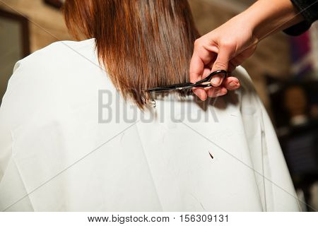 Hairdresser cut long ends to yuong woman.