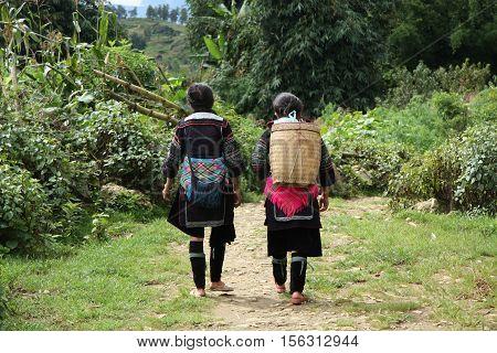 Black Hmong Ethnic Minority women walk through the forest to village near Sapa, Vietnam