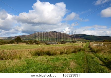 Machrie moor on the Isle of Arran
