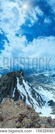 Alp Flowers Over Mountain Precipice