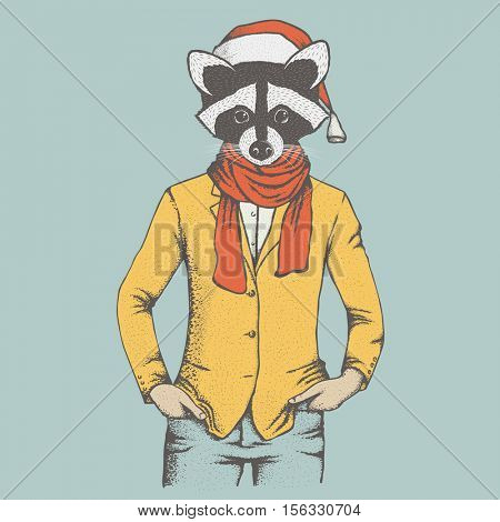 Raccoon vector illustration. Raccoon in human suit with santa hat
