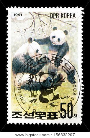 NORTH KOREA - CIRCA 1991 : Cancelled postage stamp printed by North Korea, that shows Pandas.