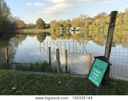 HAMPSTEAD - NOVEMBER 11: Highgate Men's Bathing Pond on Hampstead Heath on November 11, 2016 in Hampstead, London.