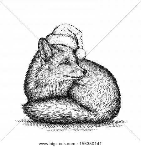 cunning fox, black and white engrave. Christmas hat.